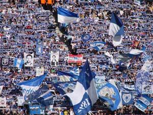 Hertha Fanblock