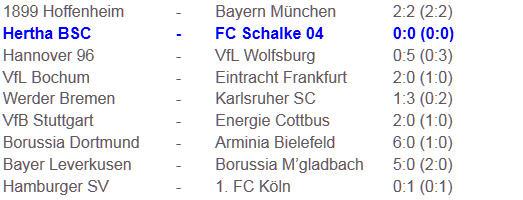 Marko Pantelic Hertha BSC Schalke 04