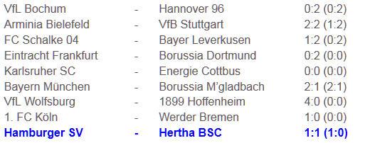 Wermutstropfen Gojko Kacar Gelb Hertha BSC Hamburger SV