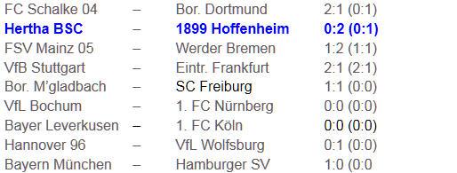 Josip Simunic Hertha BSC 1899 Hoffenheim