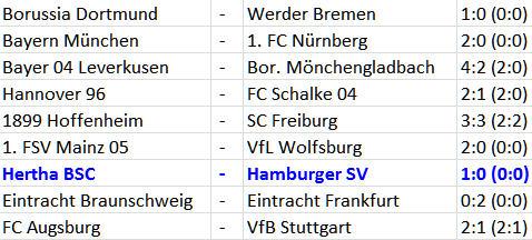 Jos Luhukay Nico Schulz Hertha BSC Hamburger SV