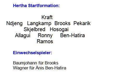 2014 - Mannschaftsaufstellung Hertha BSC 1899 Hoffenheim