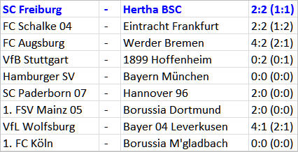 John Heitinga Nerver beim SC Freiburg Hertha BSC