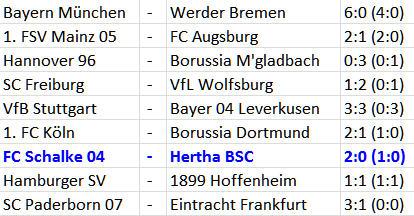 FC Schalke 04 Hertha BSC John Heitinga Innenverteidigung