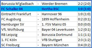Fabian Lustenberger FC Schalke 04 - Hertha BSC