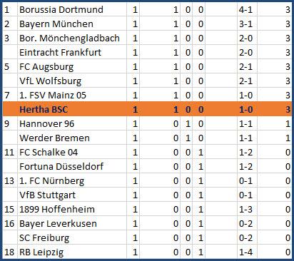 Vedad Vedator Ibisevic Siegtreffer Hertha BSC - 1. FC Nürnberg