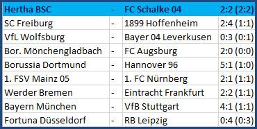 Tor Vedad Ibisevic Hertha BSC - FC Schalke 04