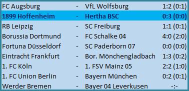 Kopfballtor Vedad Ibisevic TSG 1899 Hoffenheim - Hertha BSC - 0:3