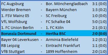 Platzverweis Vladimir Darida Borussia Dortmund - Hertha BSC 2-0